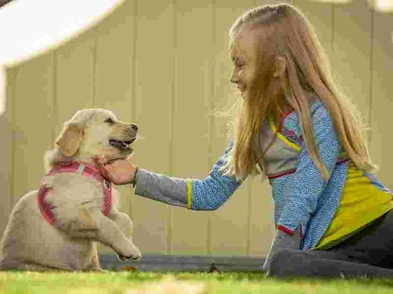 Hayvan sevgisi çocuklara nasıl aşılanabilir?